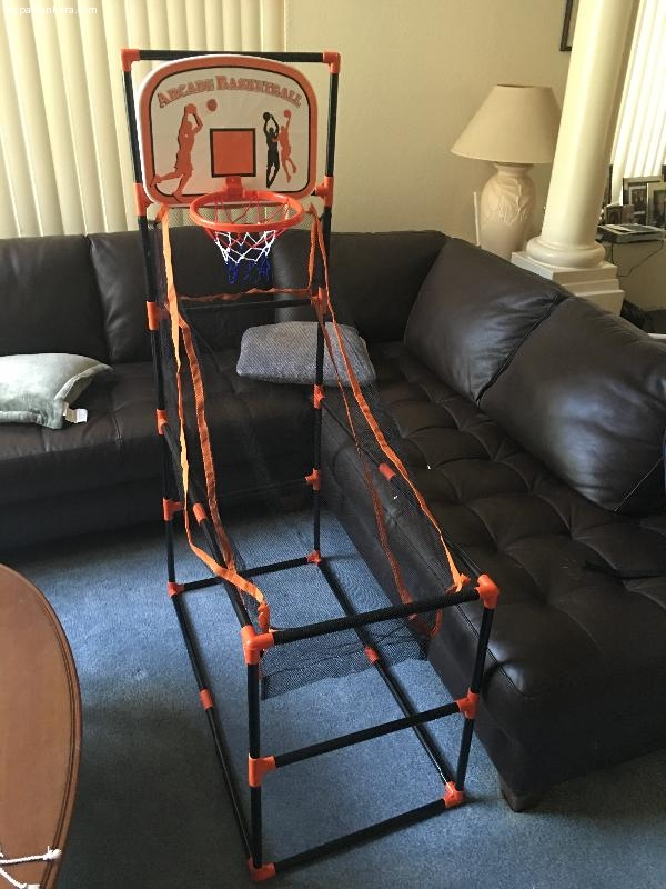 Basketball activity game