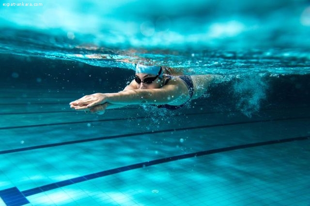 Groups And Individual Swimming Courses